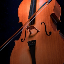 http://nwbachfest.com/uploads/cello-2830561_960_720.jpg